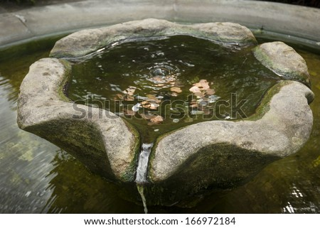 A stone wishing well with coins in the water.