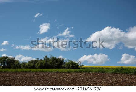 a stony field in swabian alb with shrubs and blue cloudy sky in springtime Imagine de stoc ©