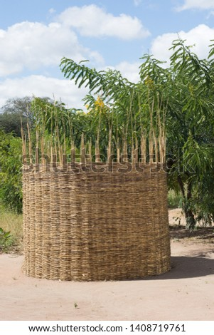 a store for storing maize made from a reeds woven together in a village in Central Malawi