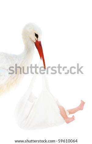 A stork holding a white bag with a baby in his beak