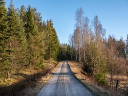 A straight dirt road goes uphill into the distance. It is evening and the setting sun is shining on a tree line stretching along the roadside. It is a calm rural landscape in Sweden, Europe.