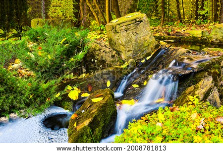 A stream in the autumn forest. Autumn stream view. Autumn forest stream flow. River stream in autumn forest