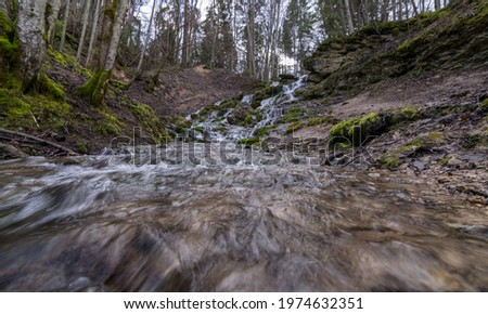 A stream of water flowing over rocks and creating a waterfall effect, clear water and green moss growing on the rocks. Kazu Grava, Latvia Foto stock ©