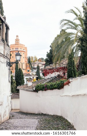A street of Granada, Spain, palms and caste view