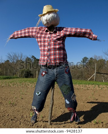 A stuffed scarecrow