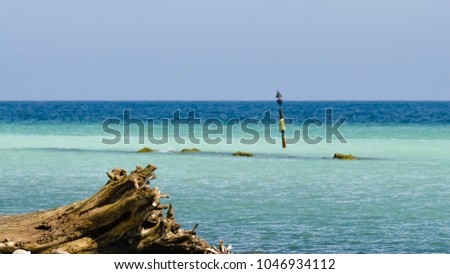 a stump and a sandbar at the beach with focus on foreground #1046934112