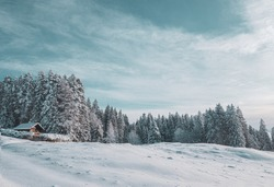 A stunning alpine s now scene. An alpine chalet is covered in snow after a fresh snow fall and set in a snowy forest in this beautiful winter setting.