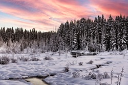 A stunning winter scene in Canada with a creek flowing through a snowy, snow covered winter boreal forest on a cloudy afternoon in January cold season.  Pink, beautiful sunset.