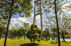 A summer day in Putrajaya, Malaysia. Old tree in foreground. The unfinished monorail bridge in the background. White clouds move in the blue sky,  green leaf moving in wind
