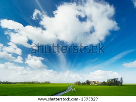 A summer landscape in the netherlands