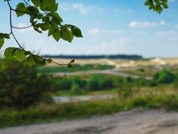 a summer scenic view looking across Sidbury Hill military training area, Salisbury Plain Wiltshire UK