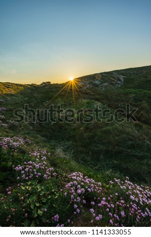 A sun star during a coastal hike to sunrise in Quiberon in Brittany on a spring morning #1141333055