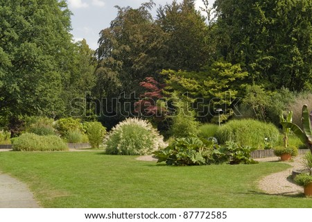 a sunny park with various plants and flowers at summer time in Southern Germany