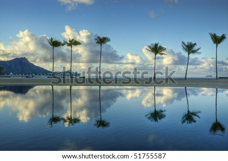 A sunrise reflection of six palms on Waikiki Beach, Oahu, Hawaii.