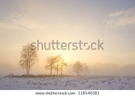 A sunset through the fog after a foggy and cold winter day
