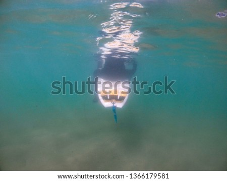 A surfer in a wetsuit sits submerged on his surfboard in the turquoise waters of the Atlantic ocean - South coast Cornwall. The waters are shallow with sand on the sea floor #1366179581