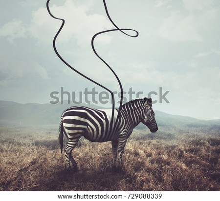 A surreal image of a zebra and two of its black stripes