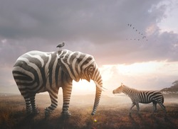 A surreal image of an African elephant wearing black and white zebra stripes