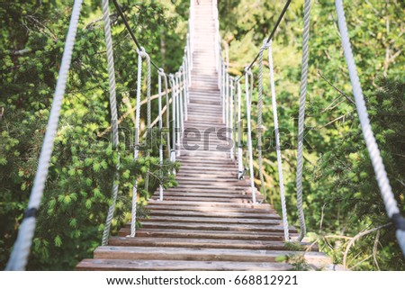 A suspension bridge high in the canopy. #668812921
