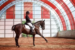 A sweet girl jockey rides a horse in a covered arena. Training of the Spanish lynx. A pedigree horse for equestrian sport.