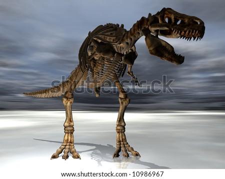 A T-Rex Tyrannosaurus dinosaur skeleton