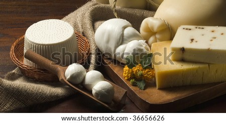 A table with Ricotta Cheese, mozzarella, Provolone, pecorino Still life