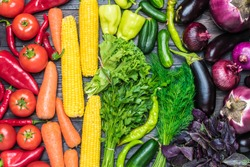 A tabletop arrangement of a variety of fresh fruits and vegetables sorted by colors-pepper, tomato, corn, carrot, green salad, cilantro, eggplant, cucumber, basil, dill, onion. Healthy food concept.