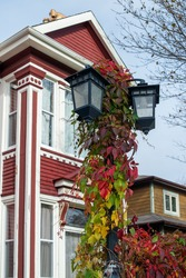 A tall black metal light pole with red and green leaves from a vine attached to the main post. There are three globes with frosted glass and two buildings in the background. One red and one brown.