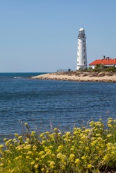 A tall white lighthouse stands on the seashore. Yellow flowers grow in the foreground