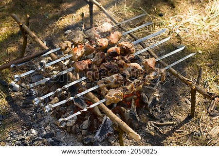 a tasty kebab is cooking on the grill