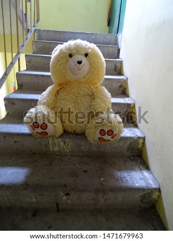 A teddy bear sits on the concrete steps in the porchA teddy bear sits on the concrete steps in the porch