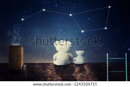 A teddy bear with a little bear sits at night on the roof of the house and looks at the constellation of the big bear.