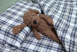 a teddy dog doll sits on a bed and a pillow at the head of the bedroom in the background of an old cage bedding. Soft toy