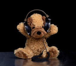 A teddy dog wearing headphones sitting