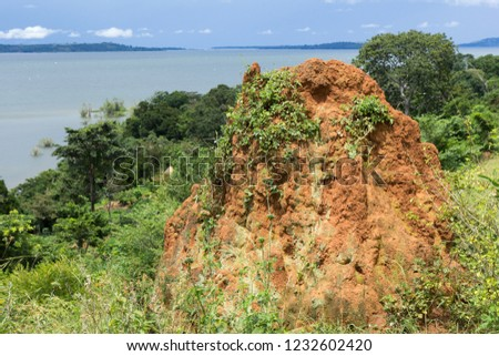 A termite ant hill (mound) in the wilderness. Lake Victoria is in the background. Photo taken in Busagazi, Uganda on May 03 2017.