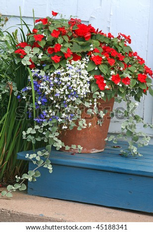 A terracotta garden planter filled with impatiens and lobelia. - stock photo