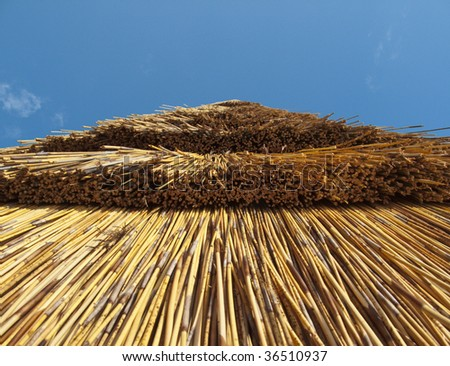 a thatched roof of a summer house in gloucestershire