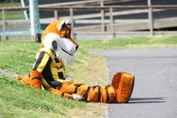 A tiger mascot