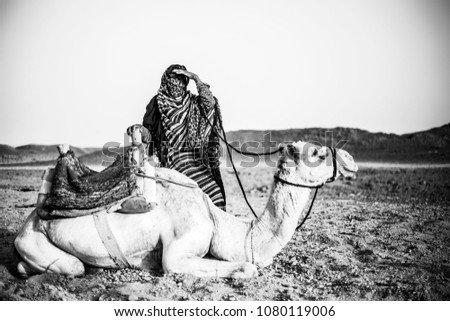 A tipical egyptian woman look over the desert of Marsa Alam, Egypt, near the camel