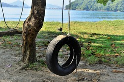 A tire swing hanging from the tree on the beach