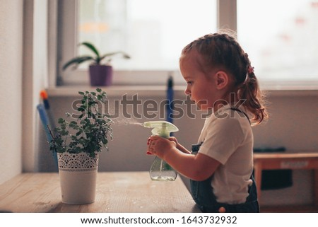 A toddler girl with brown hair looks after home flowers, sprinkles a potted plant, children's independence and help, Montessori kindergarten, toning and soft focus