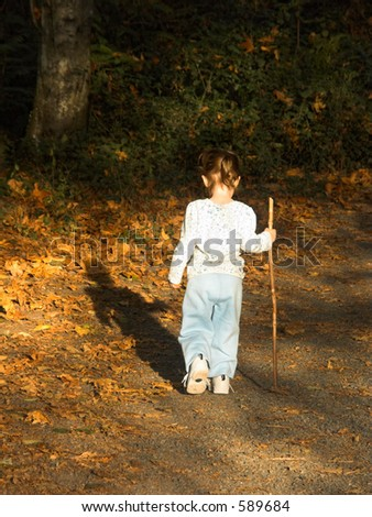A toddler with a walking stick meandering along a leaf lined path in the early fall.