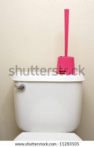 A toilet brush sitting on the back of a toilet