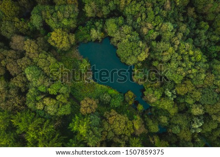 A top down view of an English countryside woodland area #1507859375
