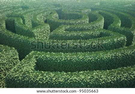 A top view of a garden maze