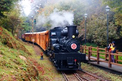 A tourist train of retro carriages traveling thru the lush forest and people, on the paved hiking path, taking photos of the antique steam locomotive, in Alishan National Scenic Area, Chiayi, Taiwan