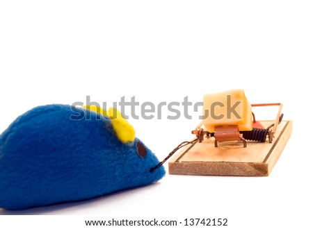A toy mouse looking at a piece of cheese, isolated on a white background
