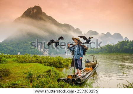 A traditional cormorant fisherman works on the Li River Yangshuo, China. #259383296