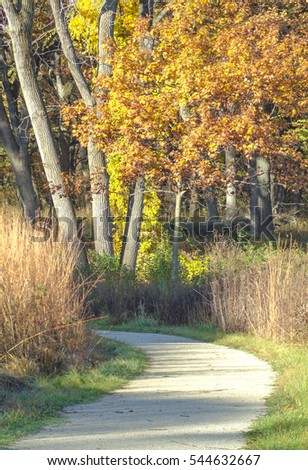 A trail through Oldfield Oaks Forest Preserve in DuPage County, Illinois provides a long look at autumn color