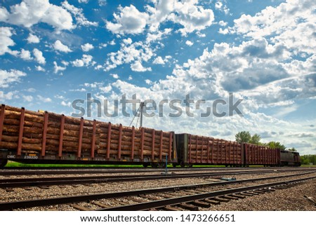A train engine with attached cars loaded with cut logs parked in a town in a summer afternoon landscape #1473266651